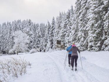 What is Cross Country Skiing?