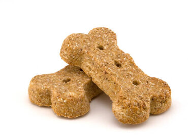A Healthy Dog Biscuit Recipe